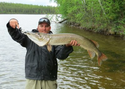 Northern Pike - Northern Saskatchewan Fishing (Mawdsley Lake Fishing Lodge)