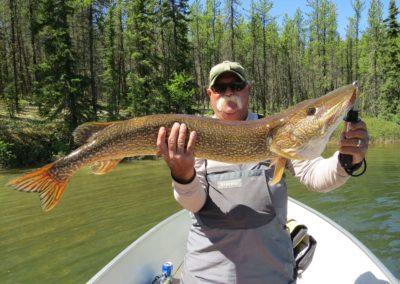 Northern Pike - North Saskatchewan Fishing (Mawdsley Lake Fishing Lodge)